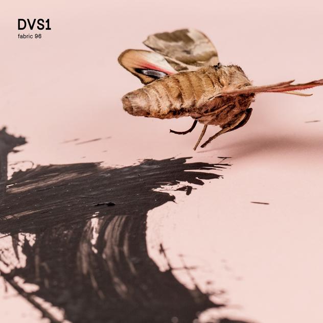 fabric 96: DVS1