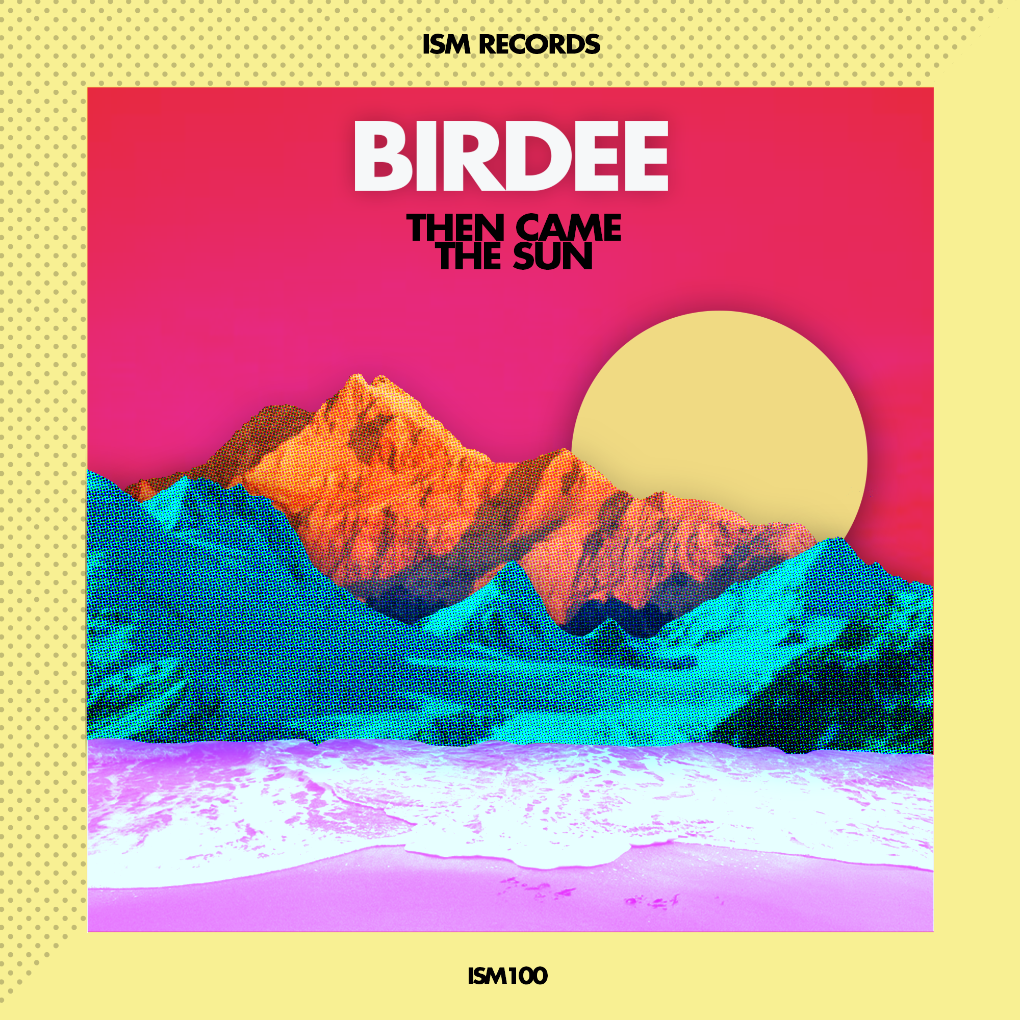 Birdee - Then Came The Sun