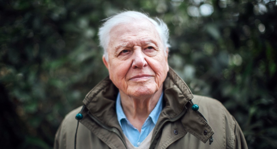 David Attenborough's field recording remix