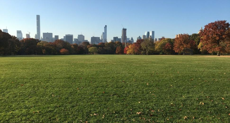 New York's Central Park to host 60,000 capacity concert to mark return of events