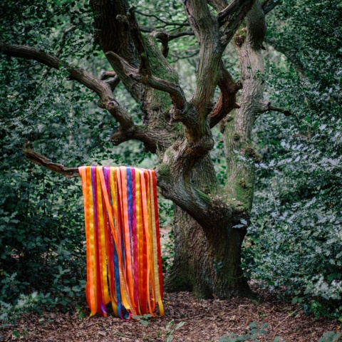 James Holden & The Animal Spirits - The Animal Spirits